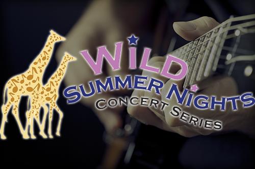 Wild Summer Nights