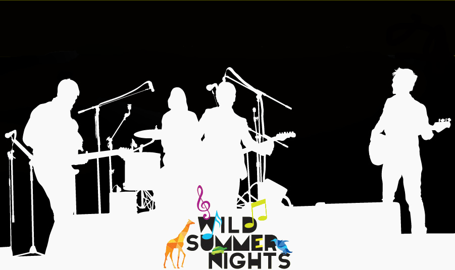 Wild Summer Nights logo with silhouette band