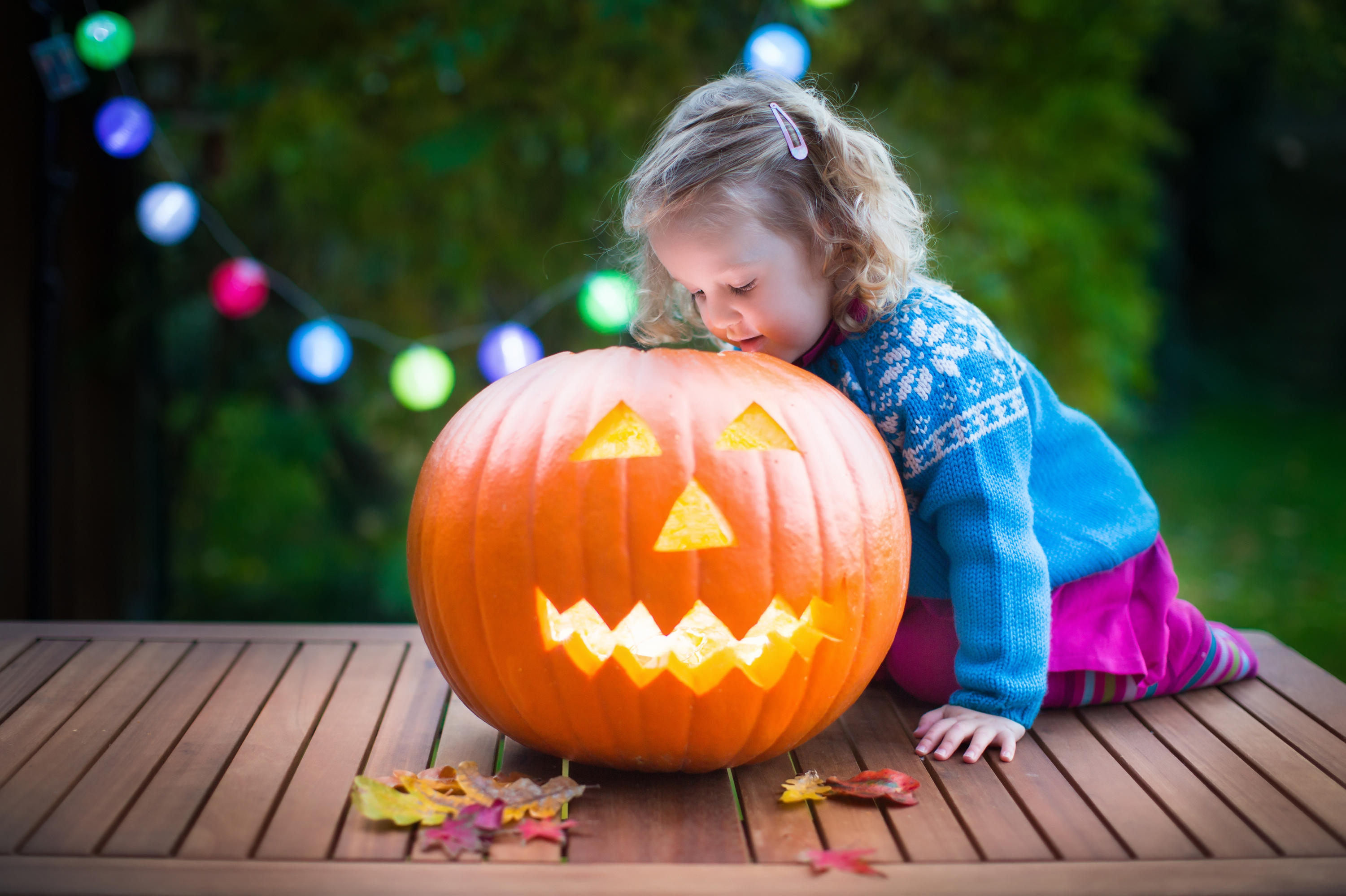 Little girl carving pumpkin at Halloween.