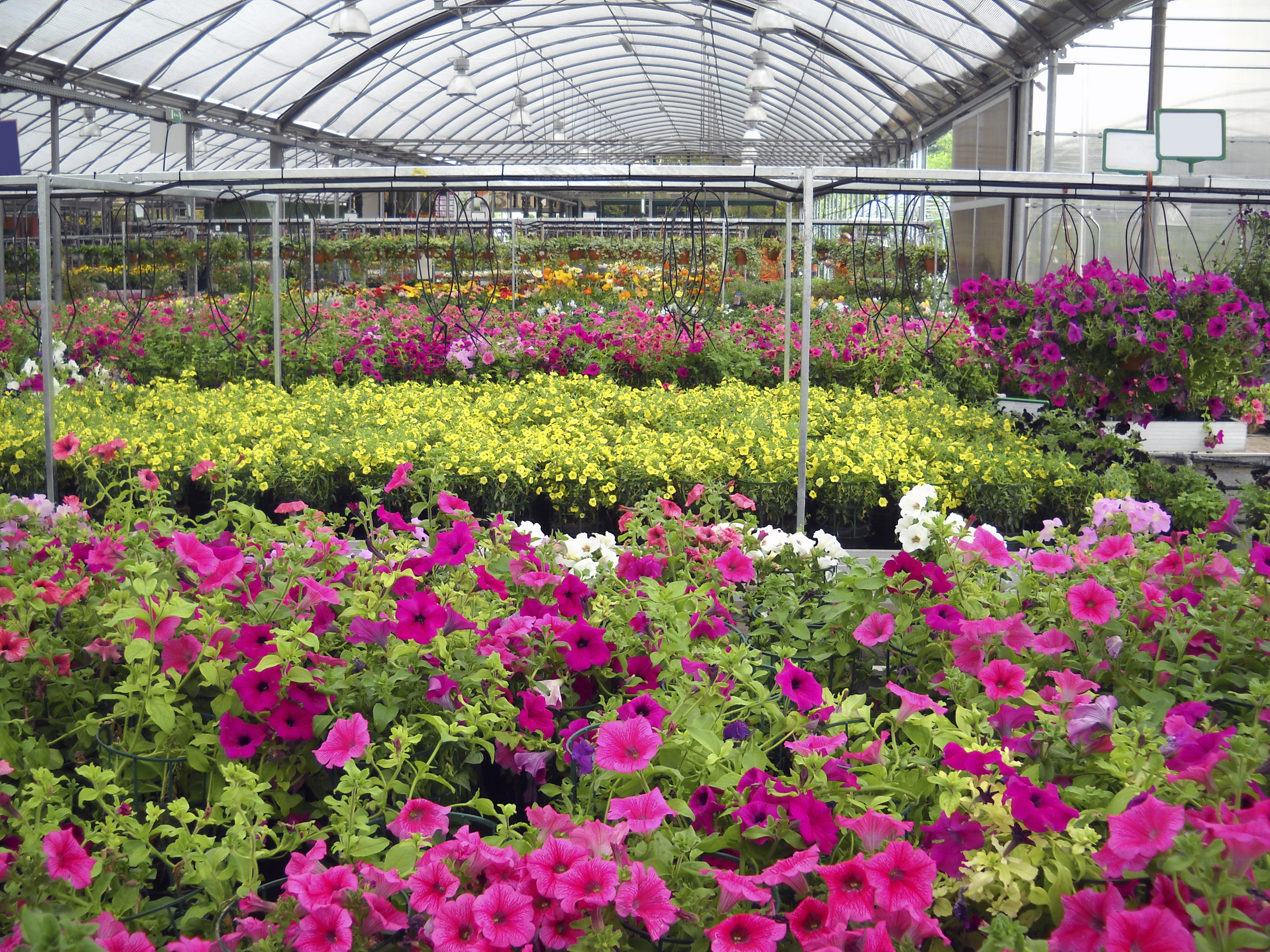Oakland County Nurseries And
