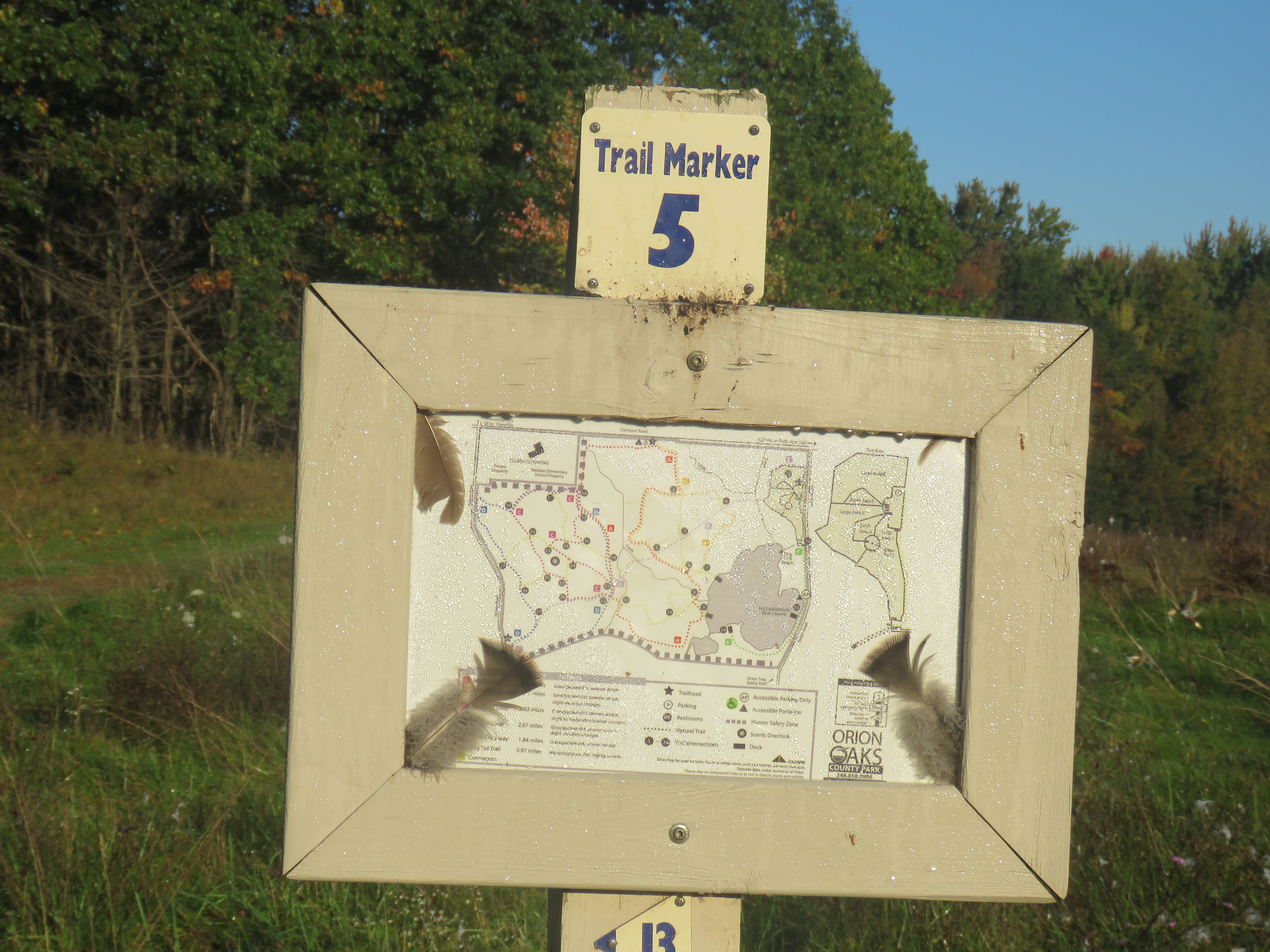 A photo of a sign that is labeled Trail Marker 5 and shows a trail map of the area at Orion Oaks County Park. Trees with mostly green leaves stand in the background. Some leaves are starting to change to orange and red.