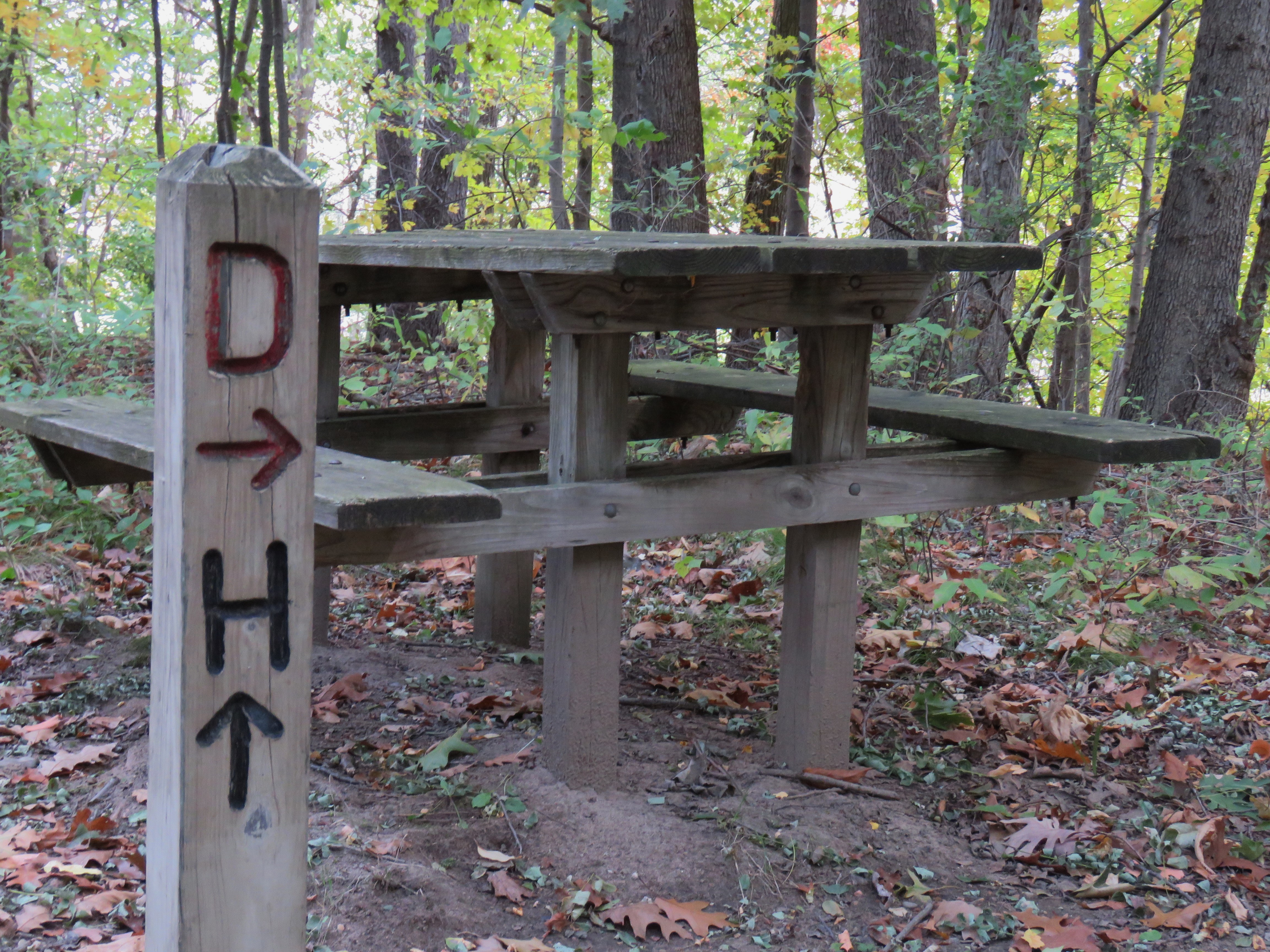 "A wood picnic table in a wooded area. A trail post stands in front of it and points to the ""D"" trail and ""H"" trail."