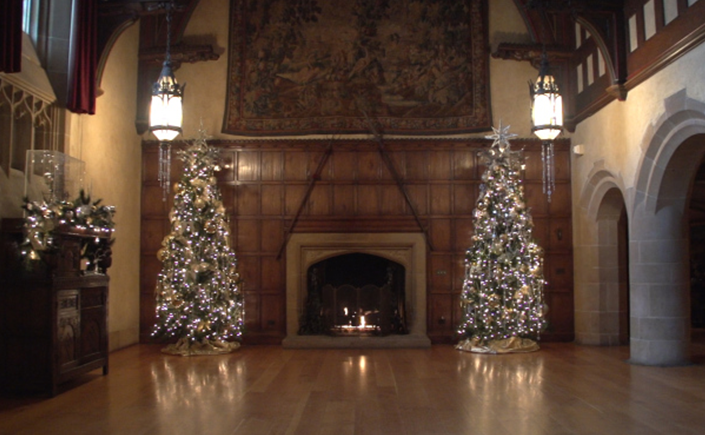 Twin, decorated trees covered in twinkling lights and beautiful ornaments sit on either side of a lit fireplace.