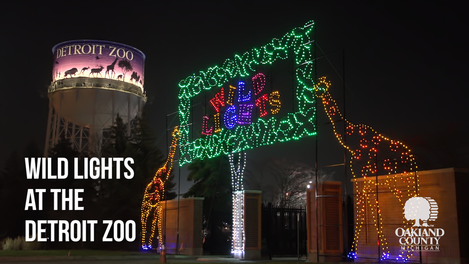 Twinkling lights illuminate two giraffe stands at the entrance of the Detroit Zoo.