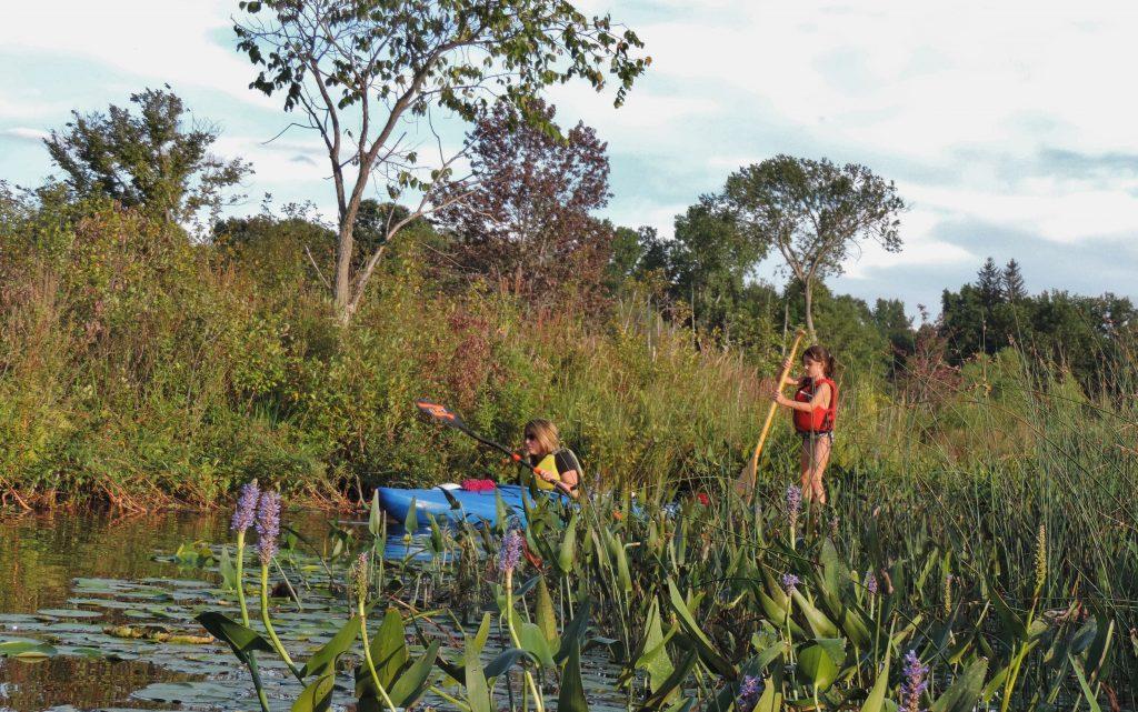 Kayaking at Graham Lakes in Oakland County, Michigan