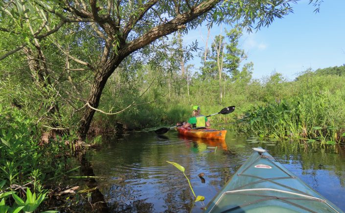 Kayaking in Oakland County, Michigan