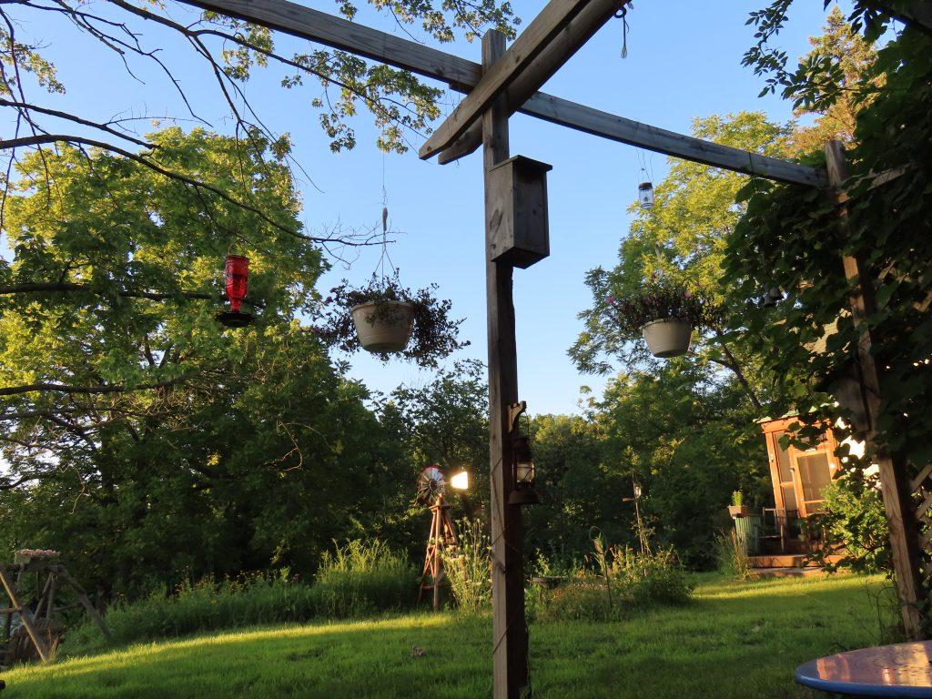 outdoor view of hummingbird feeder