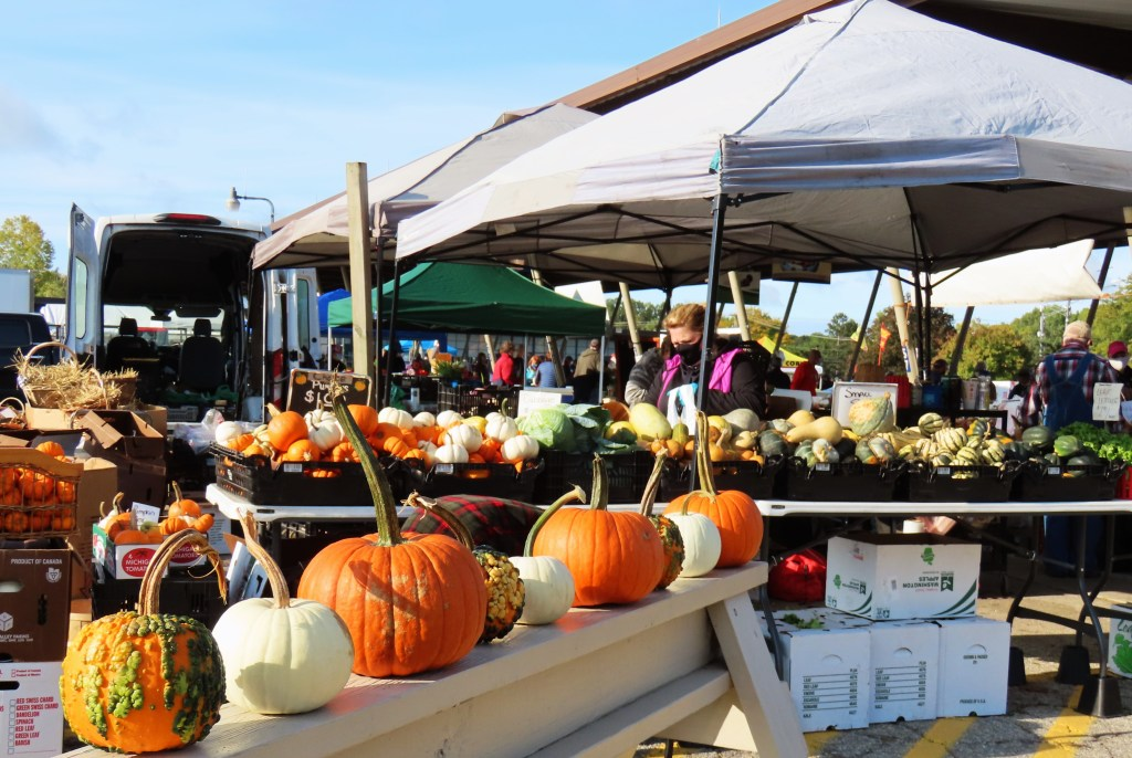 farmers market pumpkin