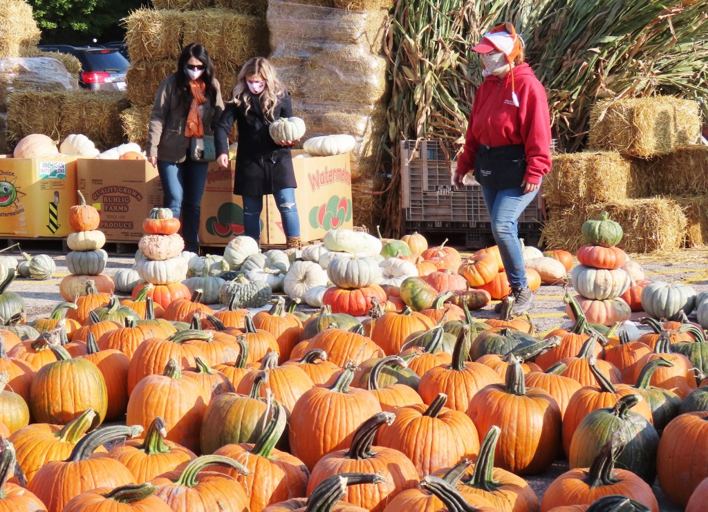 people at pumpkin patch