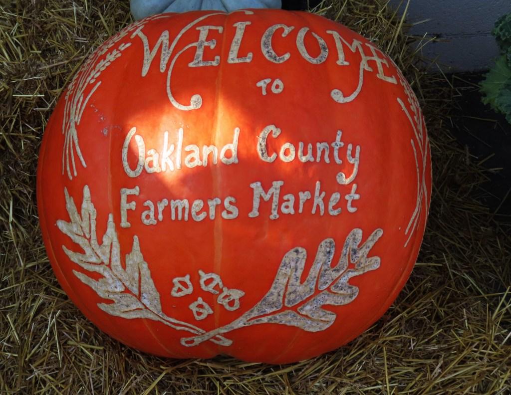 orange oakland county pumpkin
