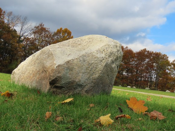 glacial boulder on grass