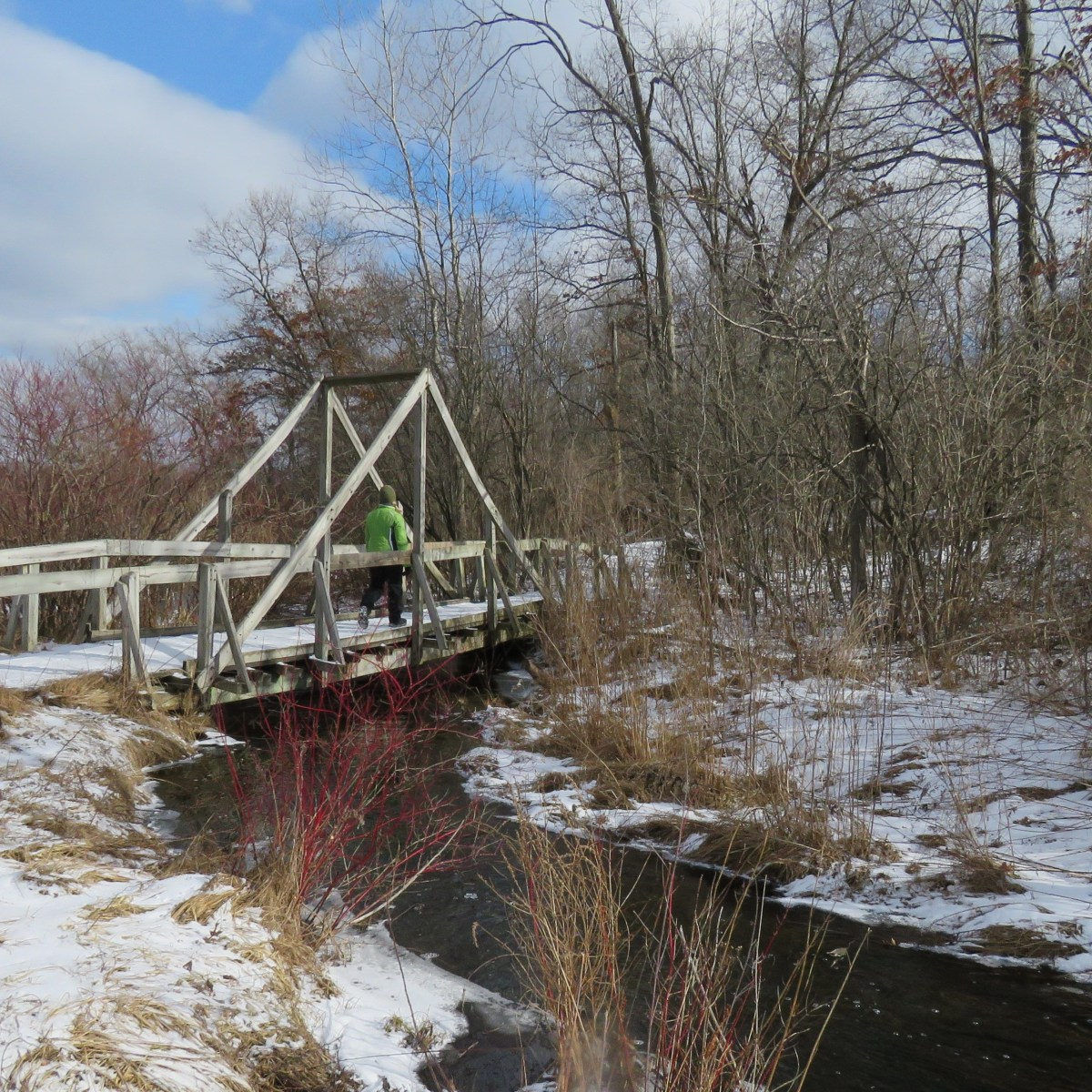 People snowshoeing on a wooden bridge