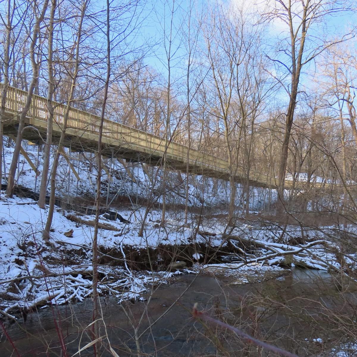 A wooden boardwalk captured from the creek below