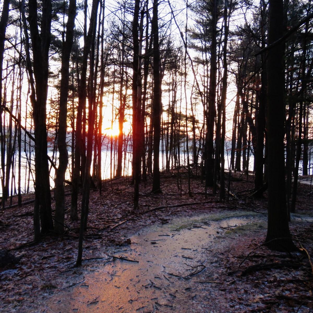 A winding trail near a lake as the sun rises