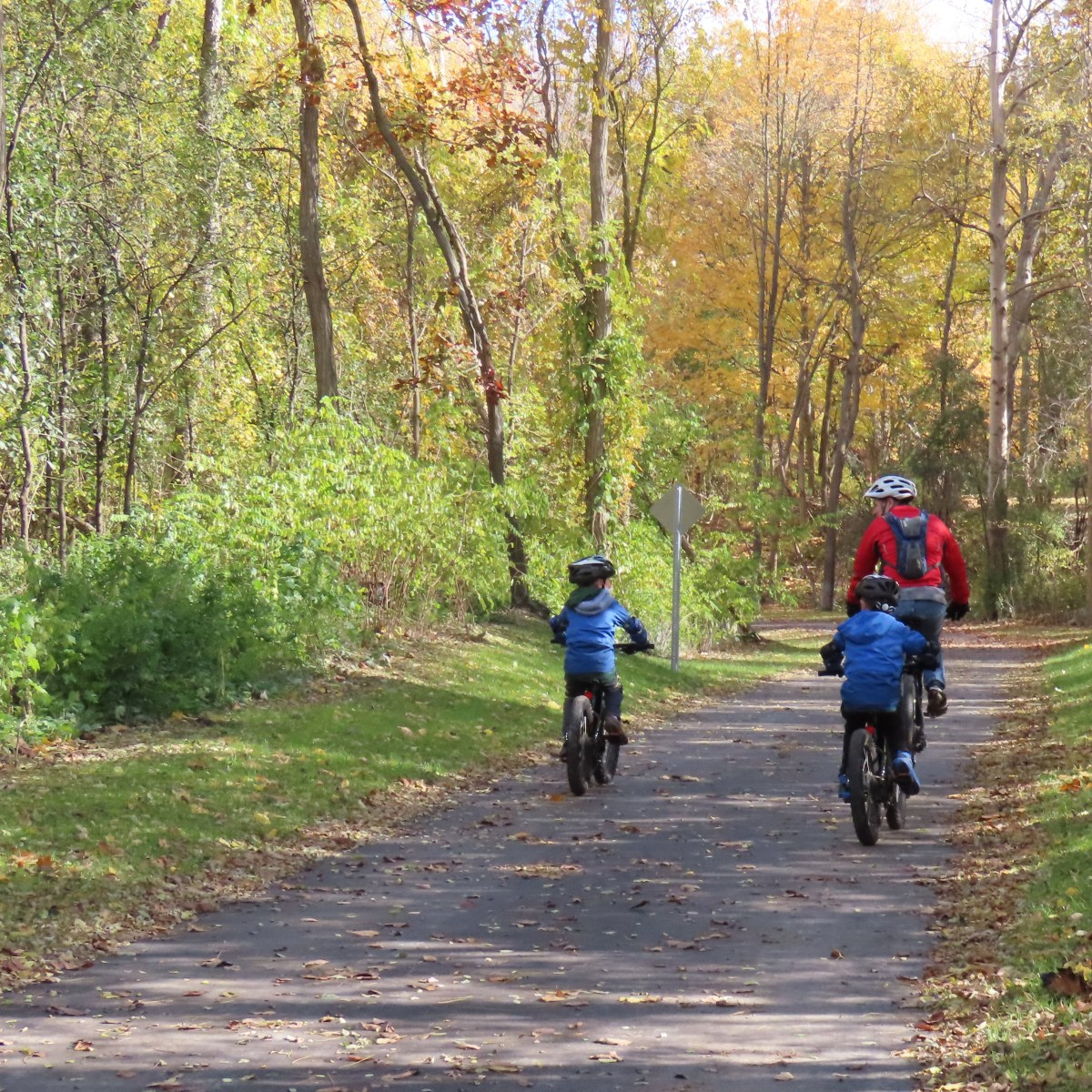 A man and two young children bike on path as leaves begin to change colors in the fall