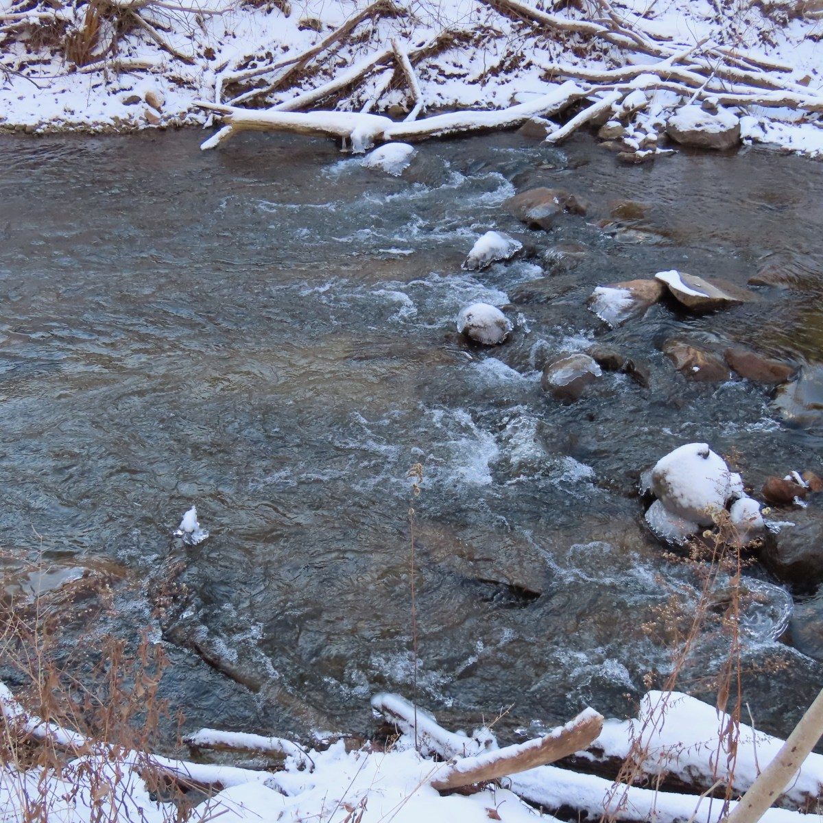 Water flows in a creek whose rocks and banks are covered in snow