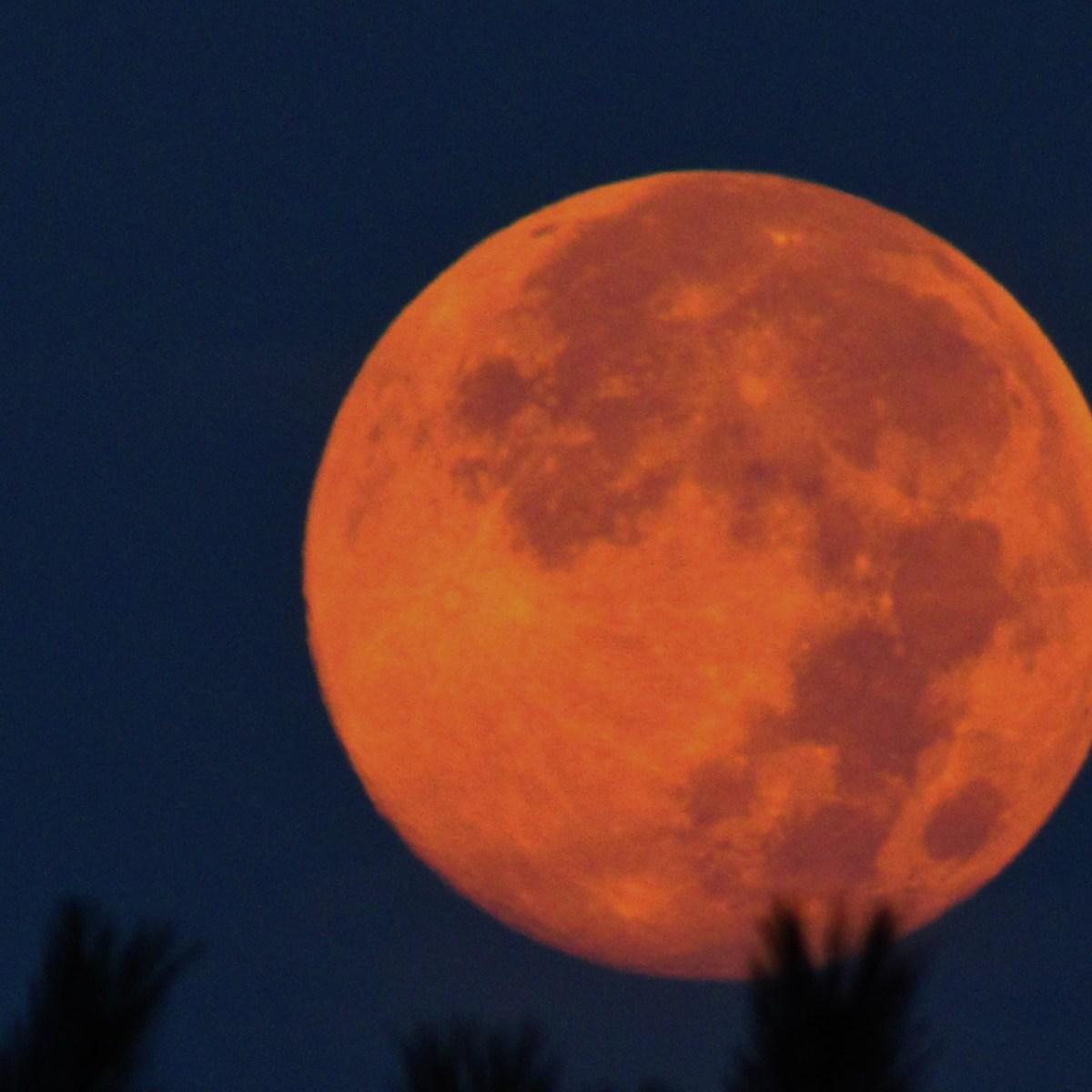 An orange-hued full moon against a dark purple sky