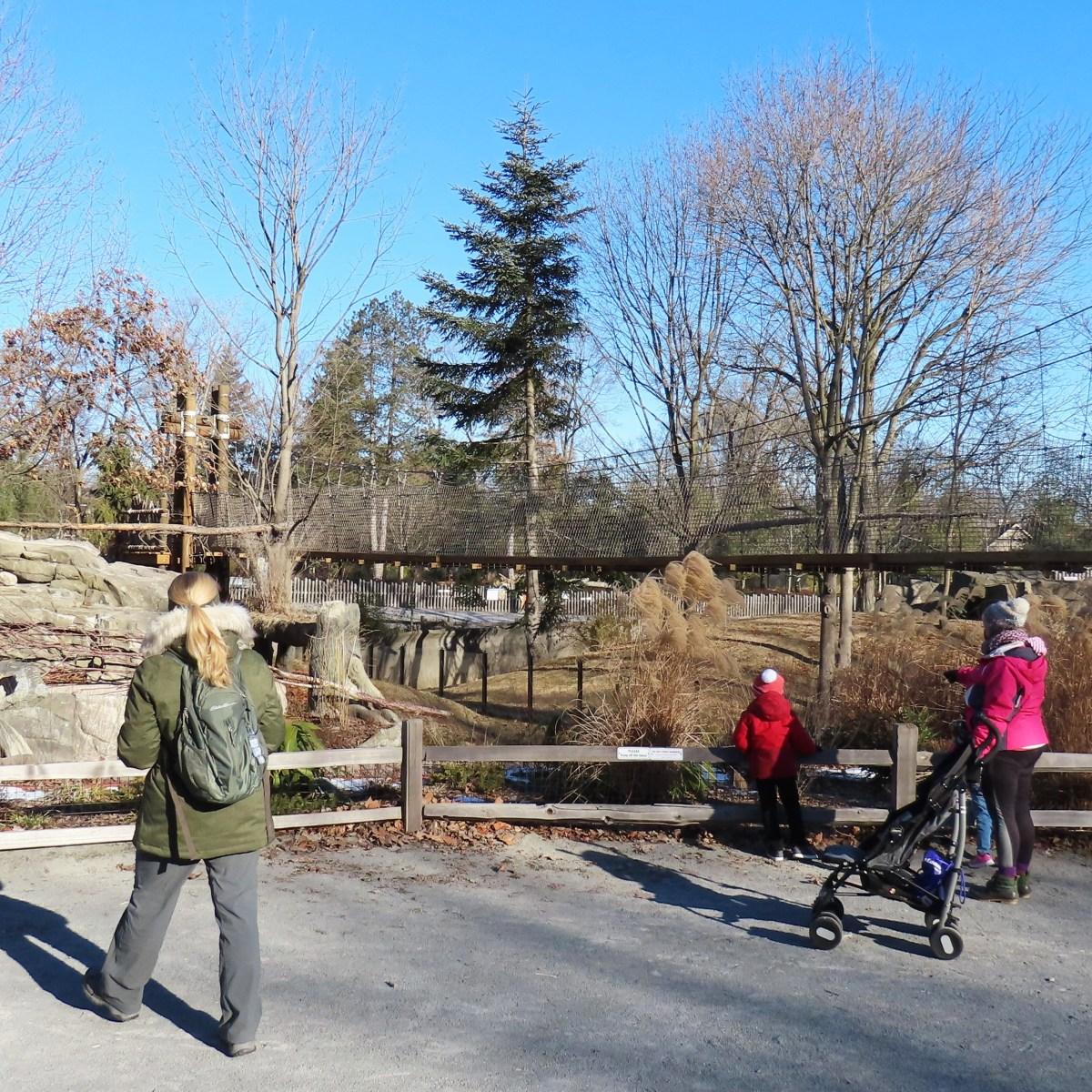 A woman and child observe a zoo enclosure on the right. Another woman approaches on the left.