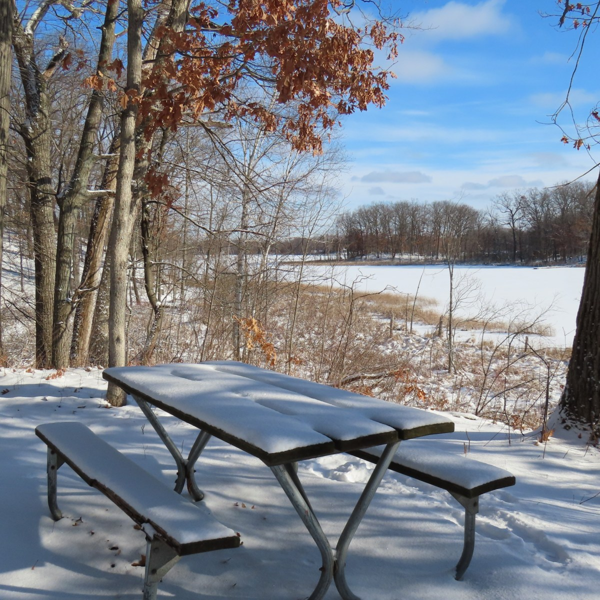 A wooden picnic table covered with snow in the woods near a lake