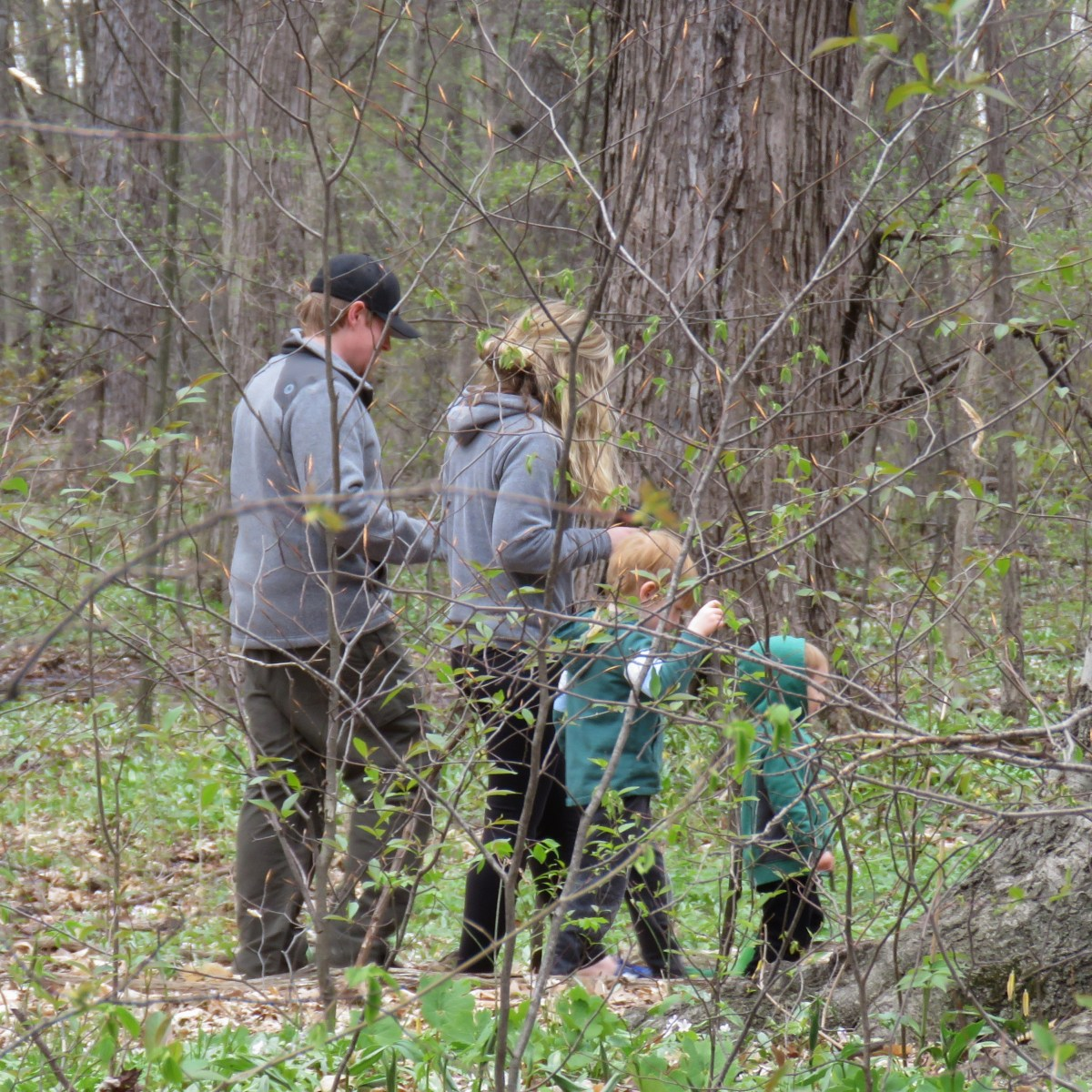 A man, woman, and two small children walk through a wooded area on an overcast day