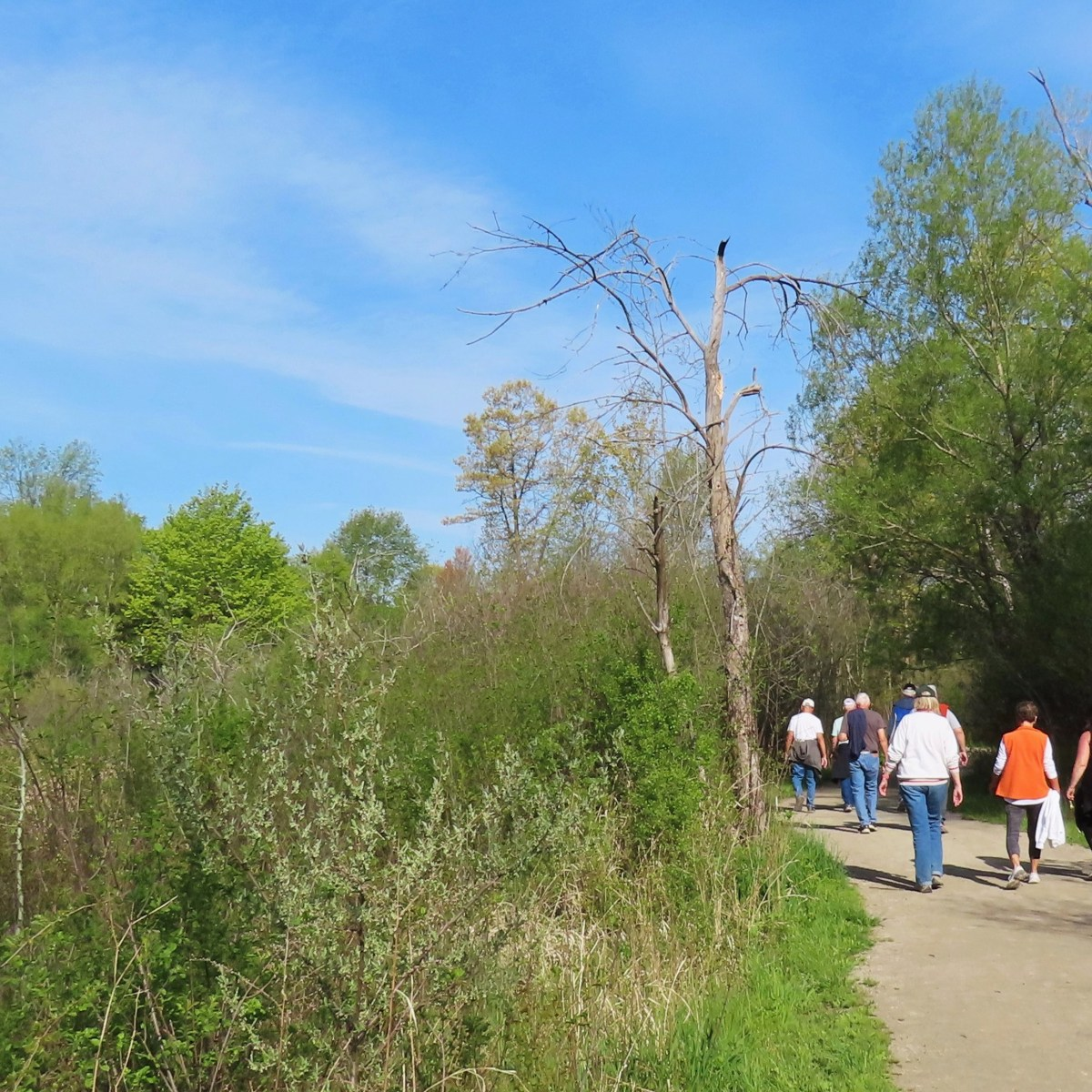 A group of people walking down a dirt trail