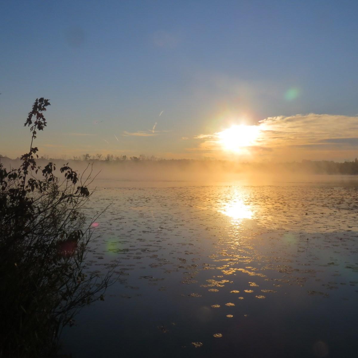 The sun rises over a lake