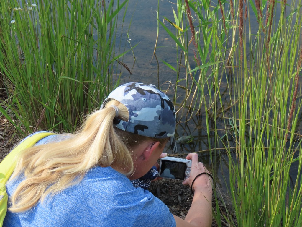 A woman, photographed from behind, crouches down to take a photo of a frog