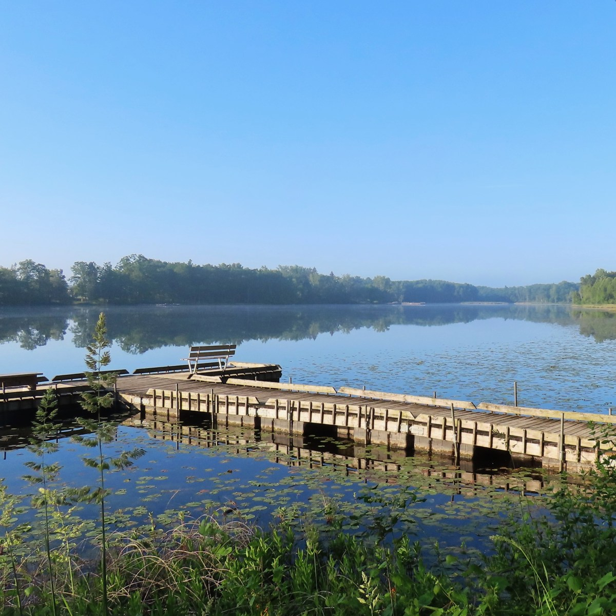 A view of a lake and its wooden T-shaped dock